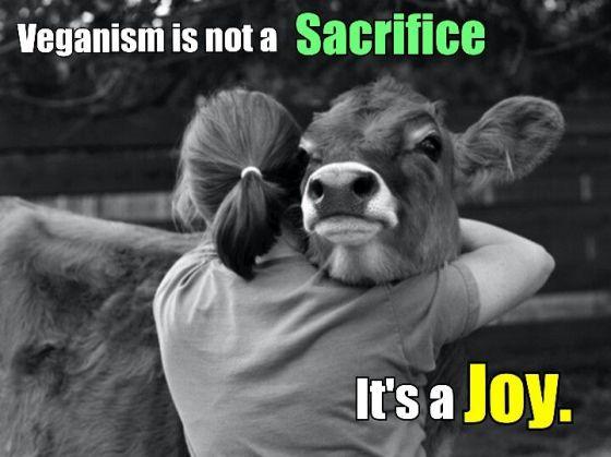 « Le véganisme n'est pas un sacrifice, c'est une joie! » Mais si c'était plus difficile dans certains cas?