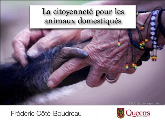 Diapositive - La citoyenneté pour les animaux domestiqués