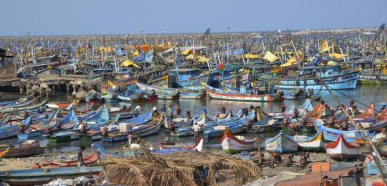Port de pêche en Inde. © S.S. Kumar