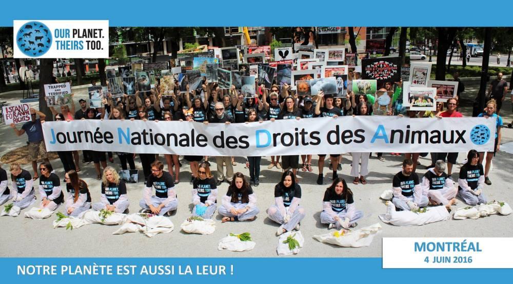 Journée national des droits des animaux 4 juin 2016 Montréal